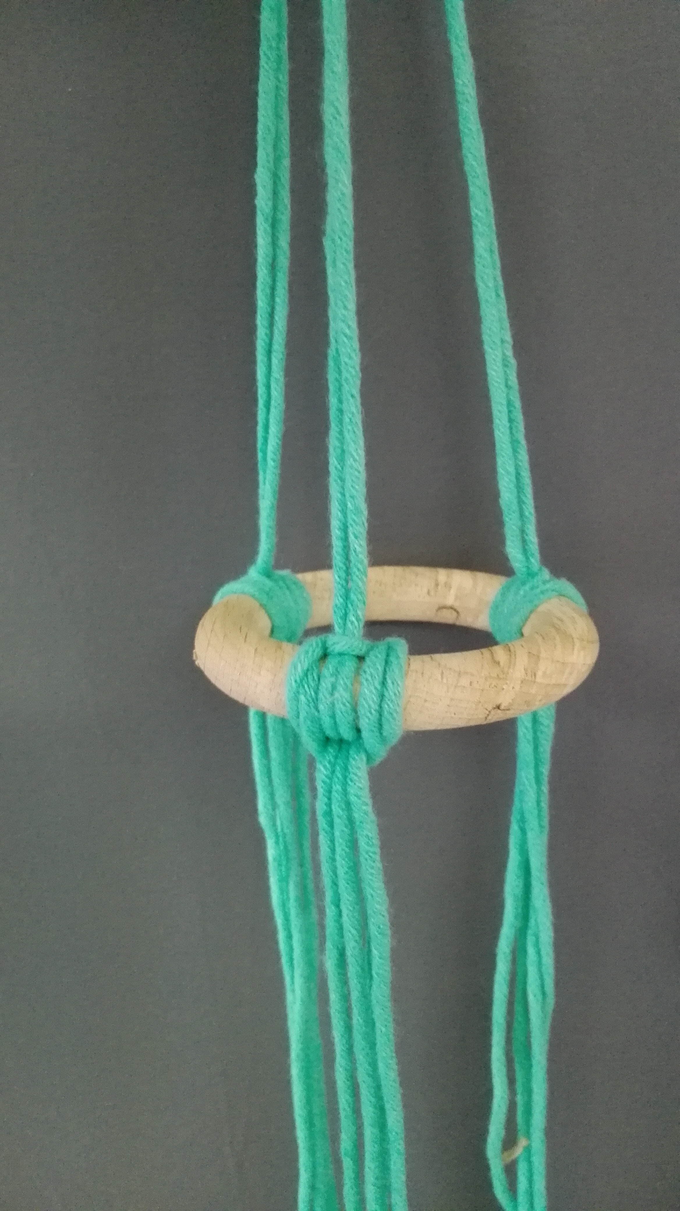 hanger seldensa 1